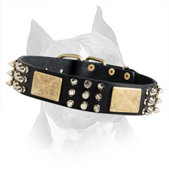 Fantastic Decorated Leather Dog Collar With Buckle And  D-Ring