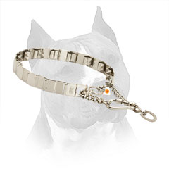 Amstaff Prong Collar for Behavior Correction of your Dog