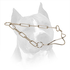 Throat Line Amstaff Collar Metal Chrome Plated