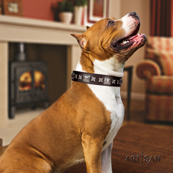 Amstaff exquisite leather dog collar with decorations for easy wearing