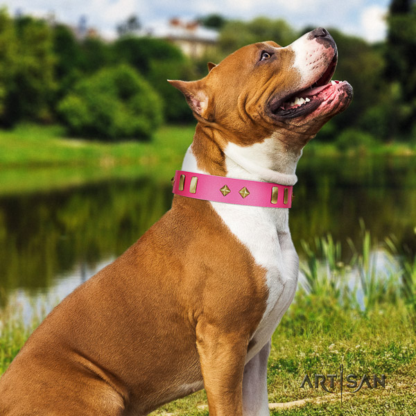 Amstaff easy adjustable genuine leather dog collar for handy use