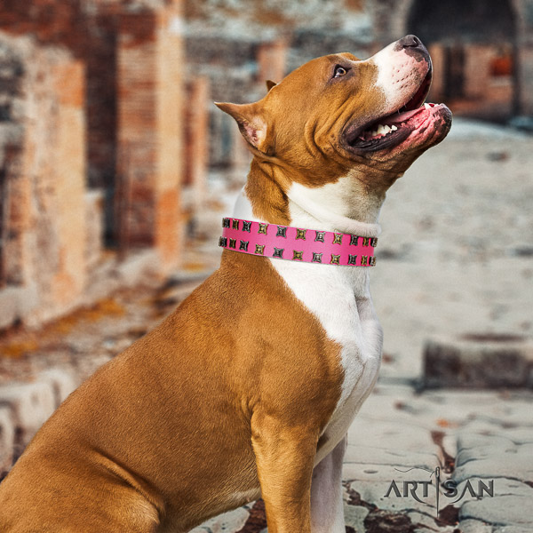 Amstaff unique leather dog collar for handy use