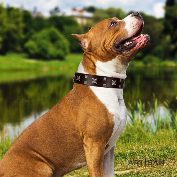 Amstaff top notch genuine leather dog collar for basic training