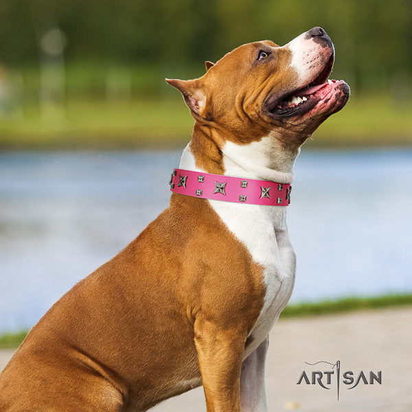 Amstaff handcrafted natural genuine leather dog collar for comfy wearing