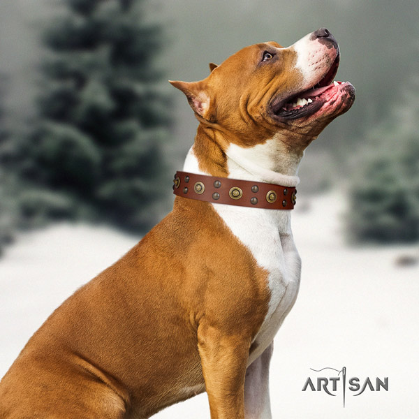 Amstaff exquisite leather dog collar with decorations for comfortable wearing
