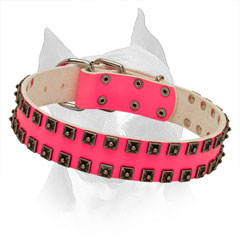 Leather Pink Collar Amstaff Gold-like Studs