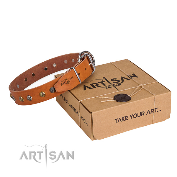 Best quality leather dog collar made for daily walking