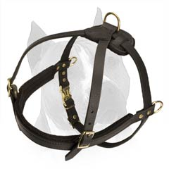 Soft Felt Padded Amstaff Dog Harness For More Comfy  Walking