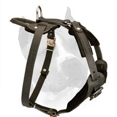Amstaff Dog Harness With Wide Padded Chest Plate