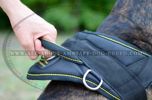 Universal Dog Harness With Special Handle