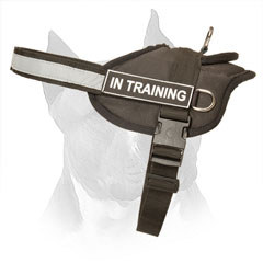 Nylon Dog Harness for Amstaff with Easy in Use Buckle
