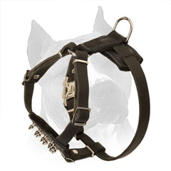 Puppy Leather Harness for Amstaff with Rust-proof Hardware