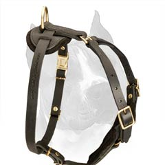 Elegant Walking And Tracking Dog Harness With Wide