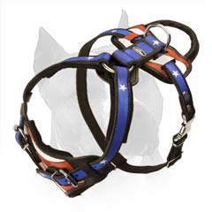 Soft Padded Chest Plate Of The Dog Harness Provides The  Dog With More Comfort