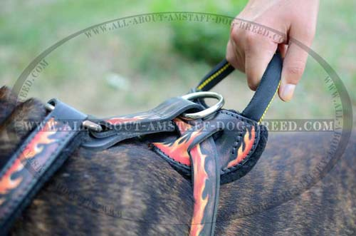 Handcrafted Soft Padded Leather Dog Harness For Amstaff  Breed
