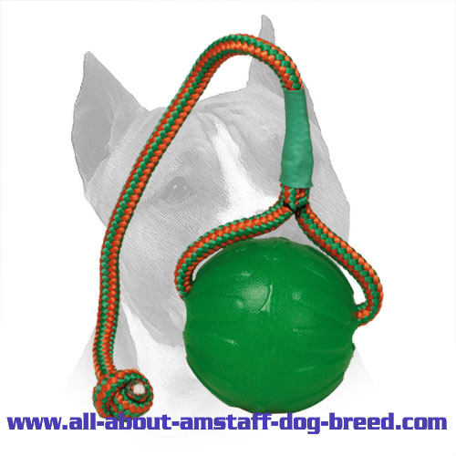 Rubber 'Roll & Throw' Amstaff Ball for Training and Fun