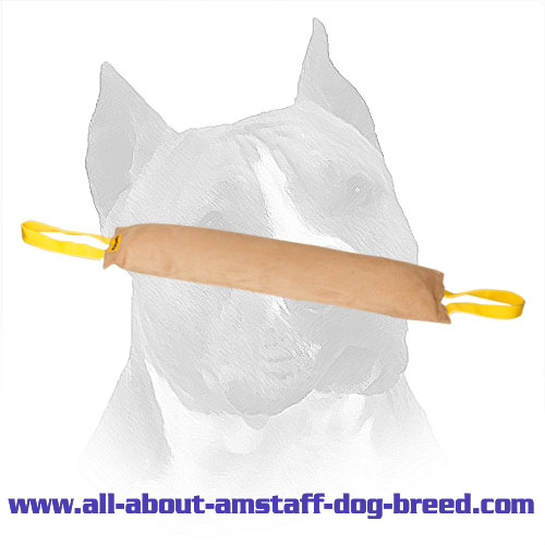Large Leather Amstaff Bite Tug with 2 Handles