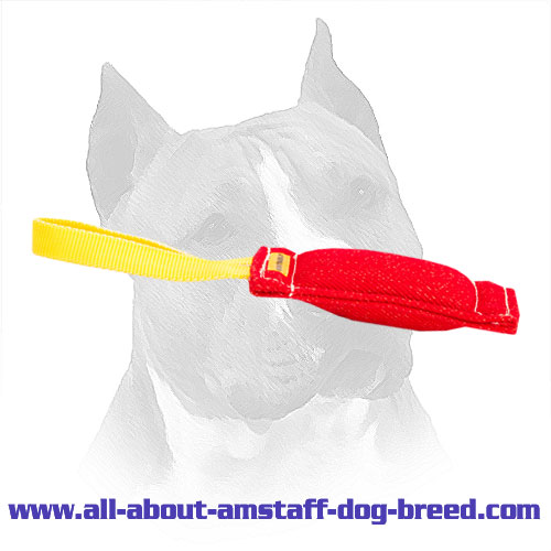 Comfortable Handled Amstaff Bite Tug Made of French Linen