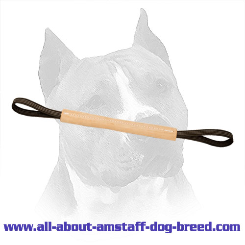Leather Amstaff Pocket Toy With Two Handles