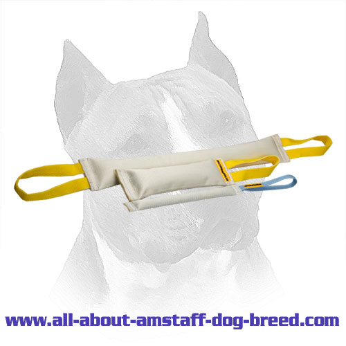 Fire Hose Bite Tugs Of Amstaff Training Set - Click Image to Close