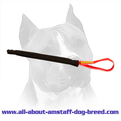 French Linen Amstaff Puppy Bite Tug with Handle