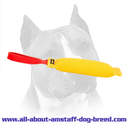 Training Amstaff Bite Tug Made of French Linen With Handle