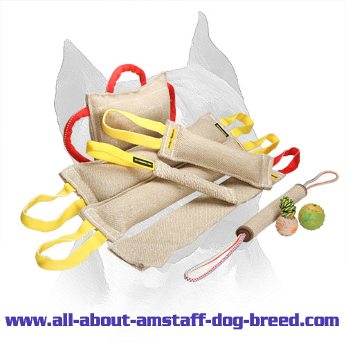 Purchase Amstaff Bite Training Set and Get 3 Amazing Gifts