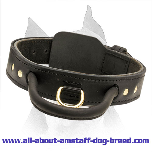 2 Ply Leather Agitation Dog Collar With Strong Handle For Amstaff Dog Breed - Click Image to Close