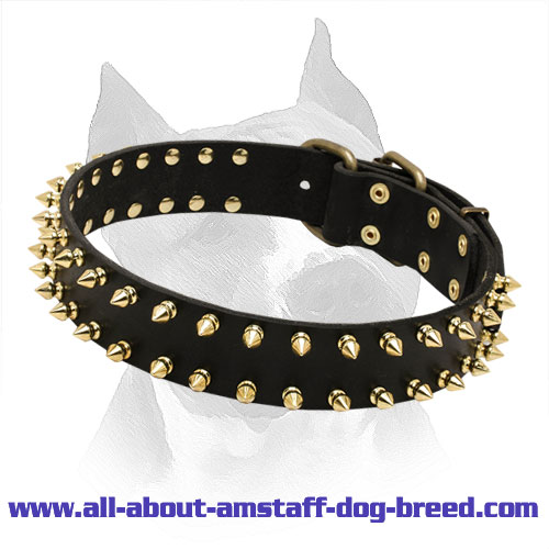 Stylish Spiked Leather Collar for Amstaff Dog Breed