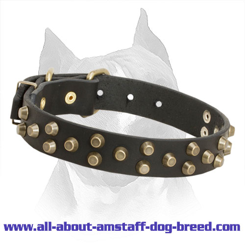 3 Rows Studded Leather Amstaff Collar