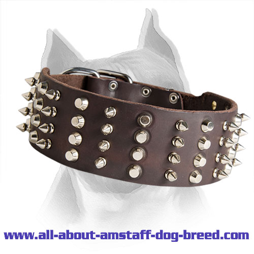 2 inch Leather Spiked and Studded Amstaff Dog Collar