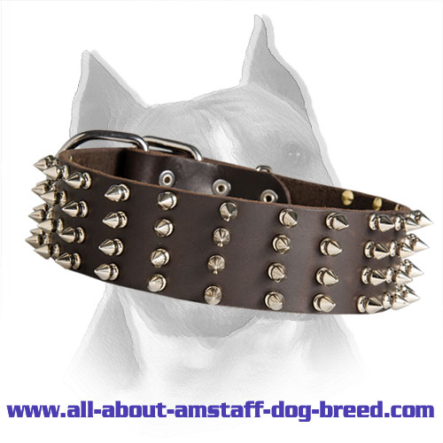 2 Inch Wide Leather Spiked Dog Collar For Amstaff
