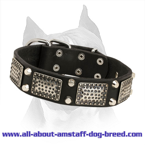 Amstaff Leather Collar with Nickel Pyramids and Massive Plates