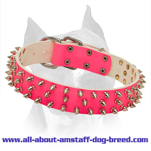 \'Bright Mood\' Pink Leather Spiked Collar for Amstaff
