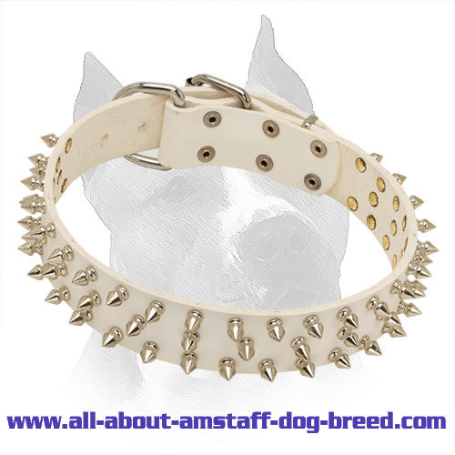 3 Row Spiked Amstaff White Leather Collar for Walking and Easy Training