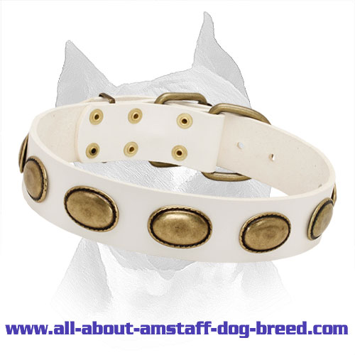 Vintage Plates White Leather Amstaff Collar