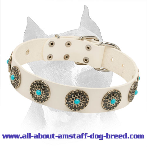 Amstaff White Leather Collar with Circles and Blue Stones