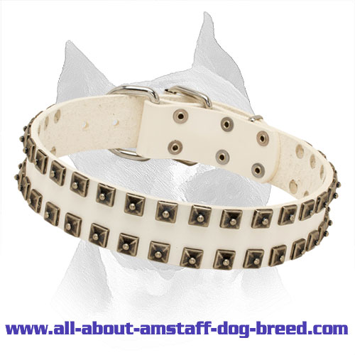 Exclusive White Leather Amstaff Collar with Old Nickel Pyramids
