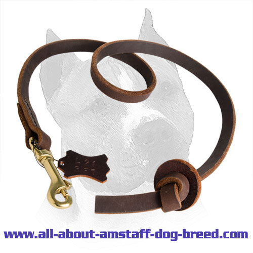 Practicable Pocket Leather Amstaff Leash for Easy Dog Control