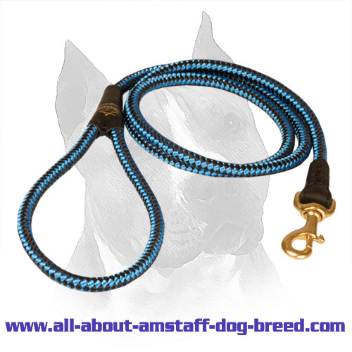 Cord Nylon Amstaff Leash for Comfortable Walking