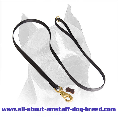 All Weather Tracking, Training, Walking Nylon Amstaff Dog Leash