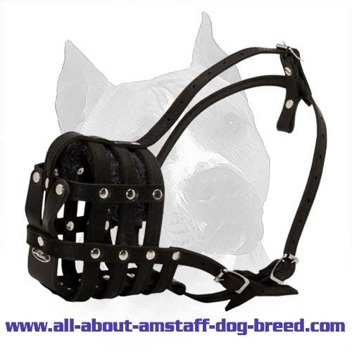 Everyday Light Weight Super Ventilated Dog Muzzle
