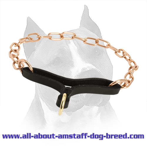 Amstaff Martingale Collar 'Perfecto Control' - 1/9 inch (3 mm) link diameter