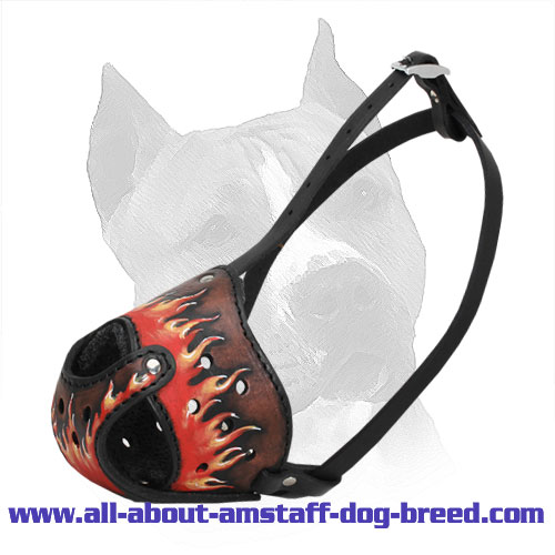 Designer Leather Dog Muzzle for American Staffordshire Terrier