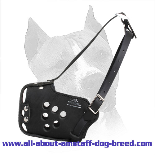 Attack/Agitation Training Leather Amstaff Muzzle