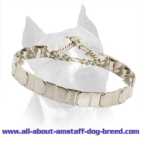 American Staffordshire Terrier Neck Tech Stainless Steel Prong Collar - 24 inch (60 cm)