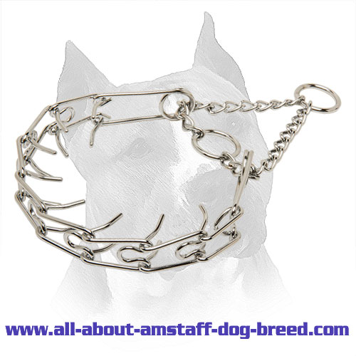 'Like a Mama's Pinch' Amstaff Prong Collar - 1/10 inch (2.3 mm) link diameter