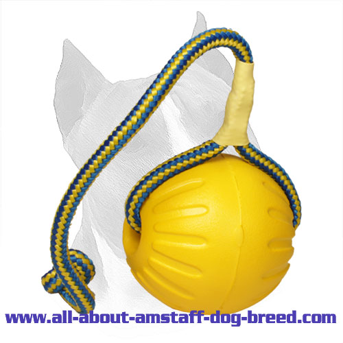 'High Fly' Foam Amstaff Ball for Playing and Training - Large