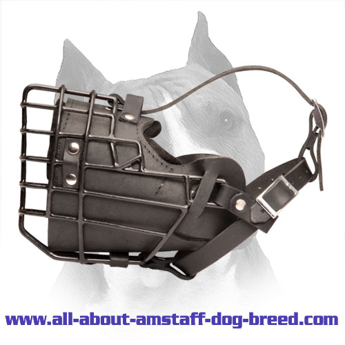 Rubber Covered Amstaff Wire Basket Dog Muzzle