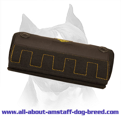 Innovative Amstaff Bite X-Builder for Puppies and Young Dogs